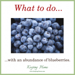 What to Do With an Abundance of Blueberries