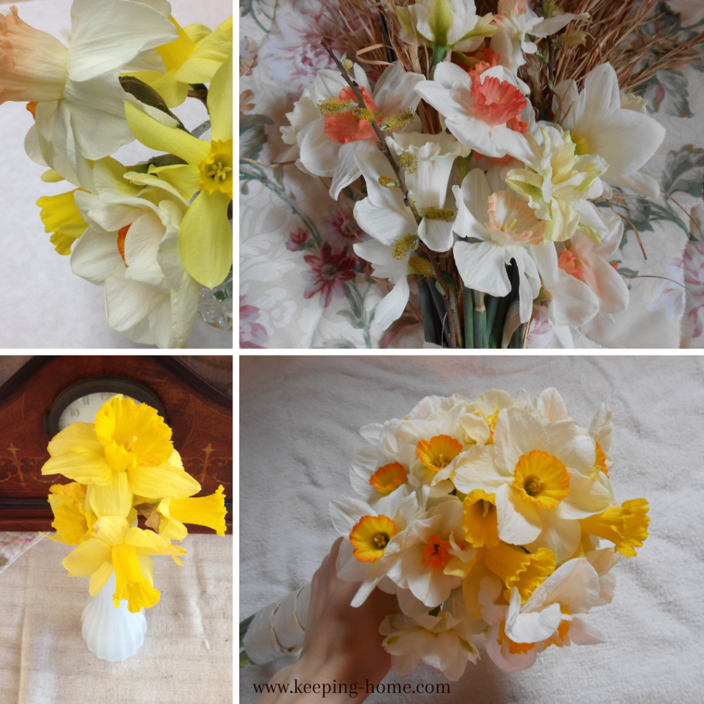 Daffodil bouquets, showcasing different colors.
