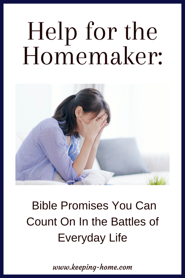Help for the Homemaker: Bible Promises You Can Count On In the Battles of Everyday Life